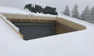 Roof Chalet D